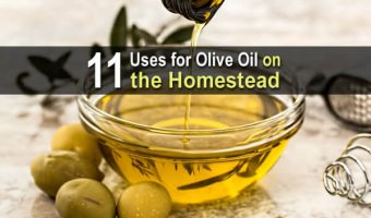 11 Uses for Olive Oil on the Homestead
