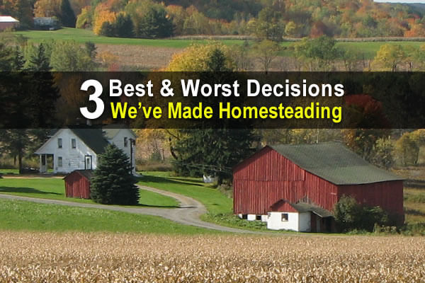 3 Best & Worst Decisions We've Made Homesteading
