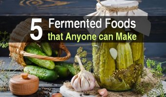5 Fermented Foods That Anyone Can Make