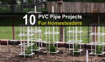 10 PVC Pipe Projects For Homesteaders