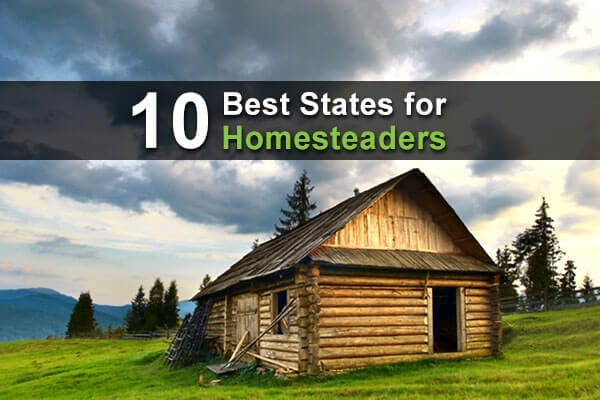 10 Best States for Homesteaders