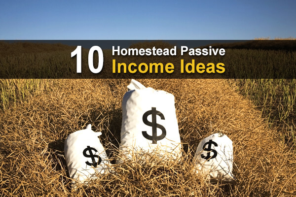 10 Homestead Passive Income Ideas