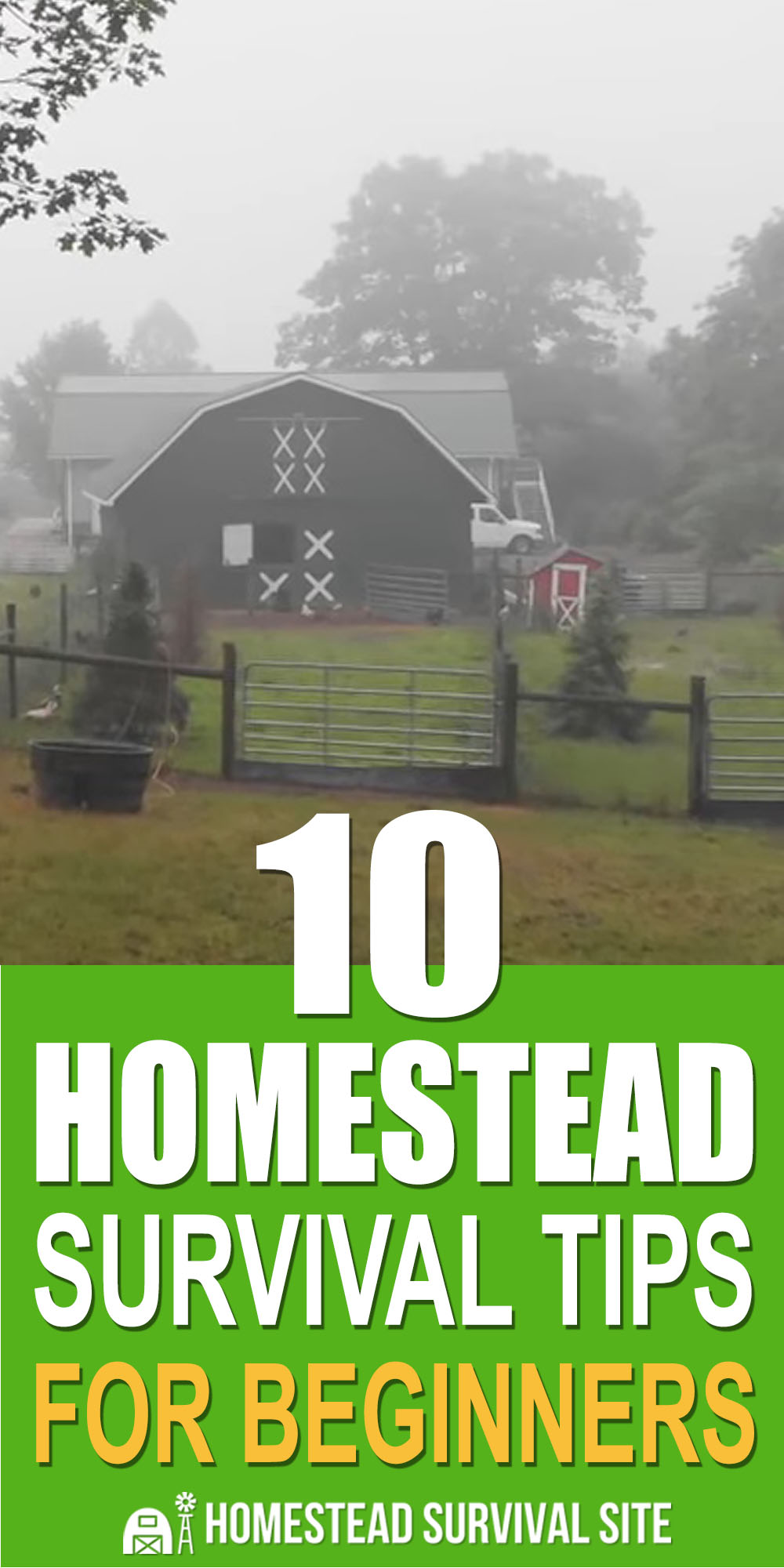 10 Homestead Survival Tips For Beginners