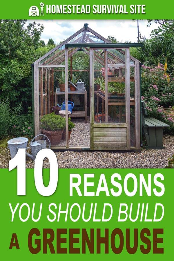 10 Reasons You Should Build a Greenhouse