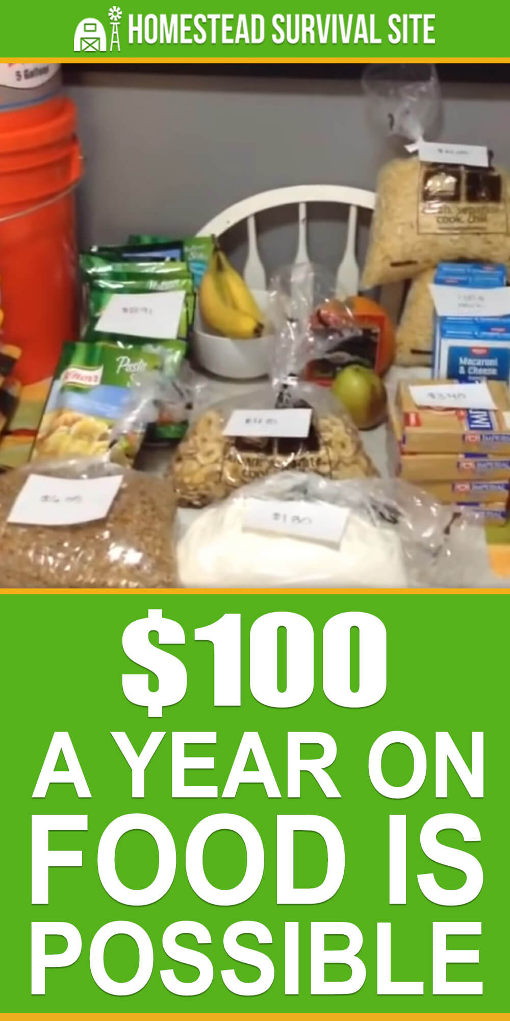 $100 a Year on Food is Possible