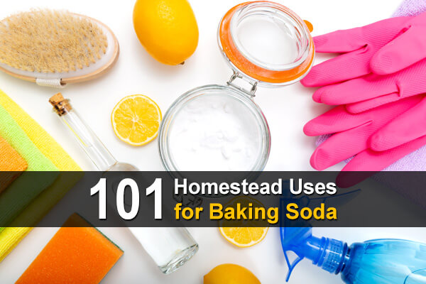 101 Homestead Uses for Baking Soda
