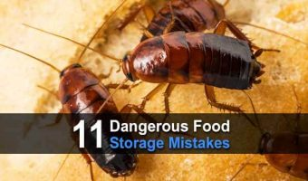 11 Dangerous Food Storage Mistakes