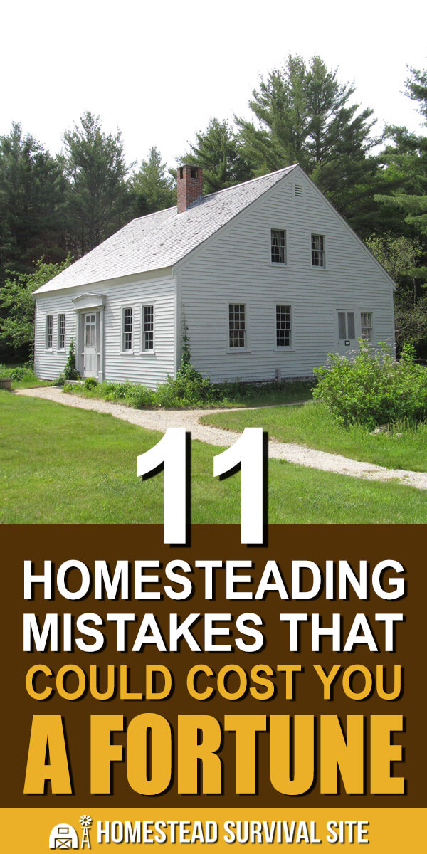 11 Homesteading Mistakes That Could Cost You A Fortune