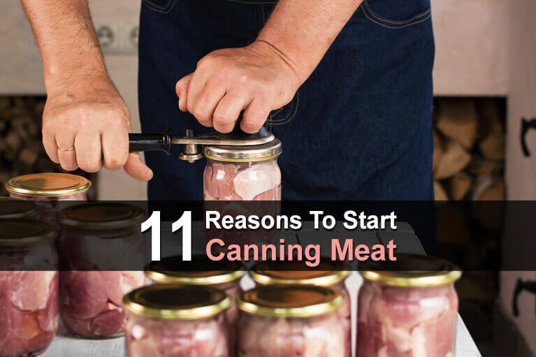 11 Reasons To Start Canning Meat