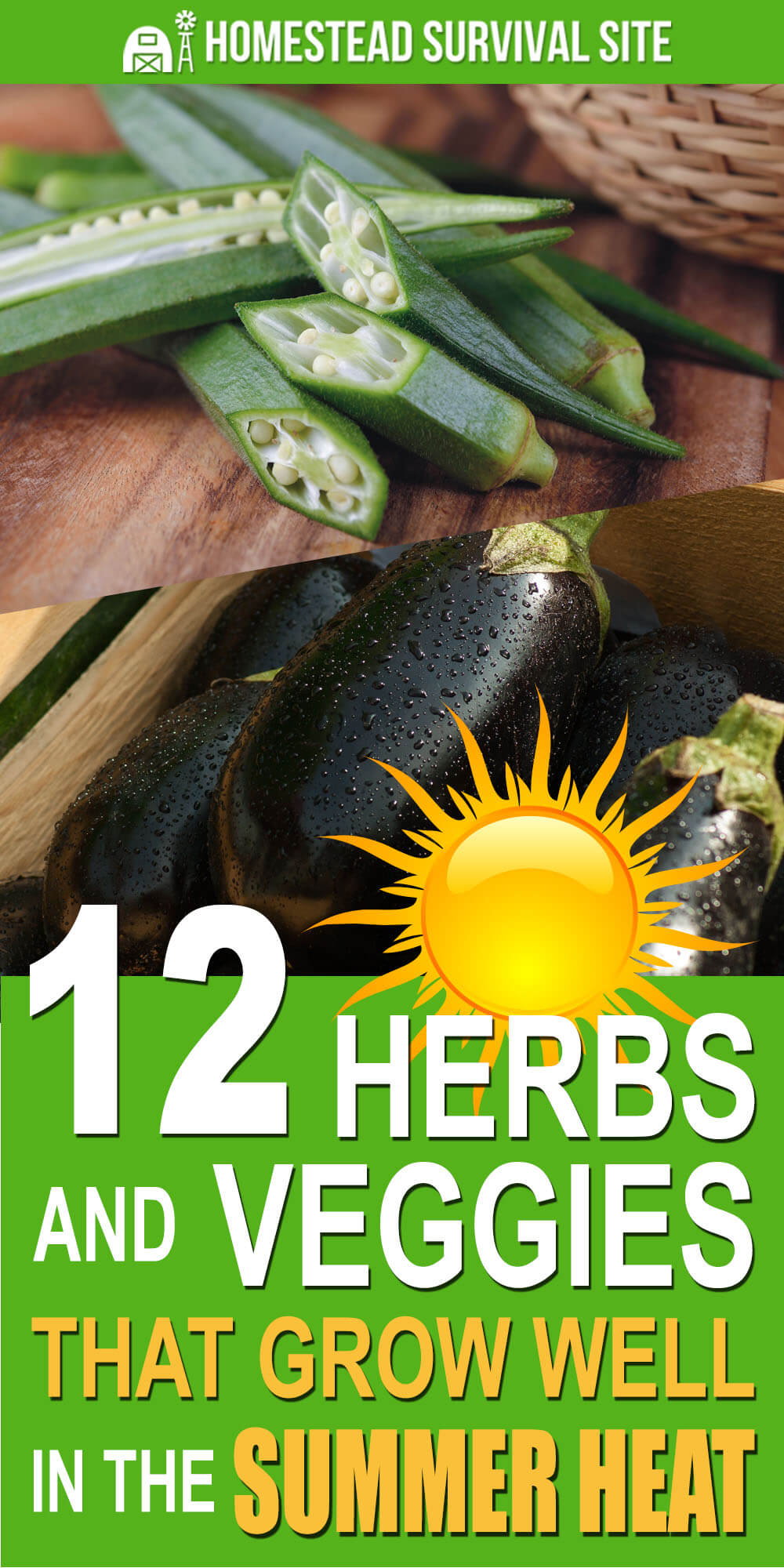 12 Herbs and Veggies That Grow Well in The Summer Heat