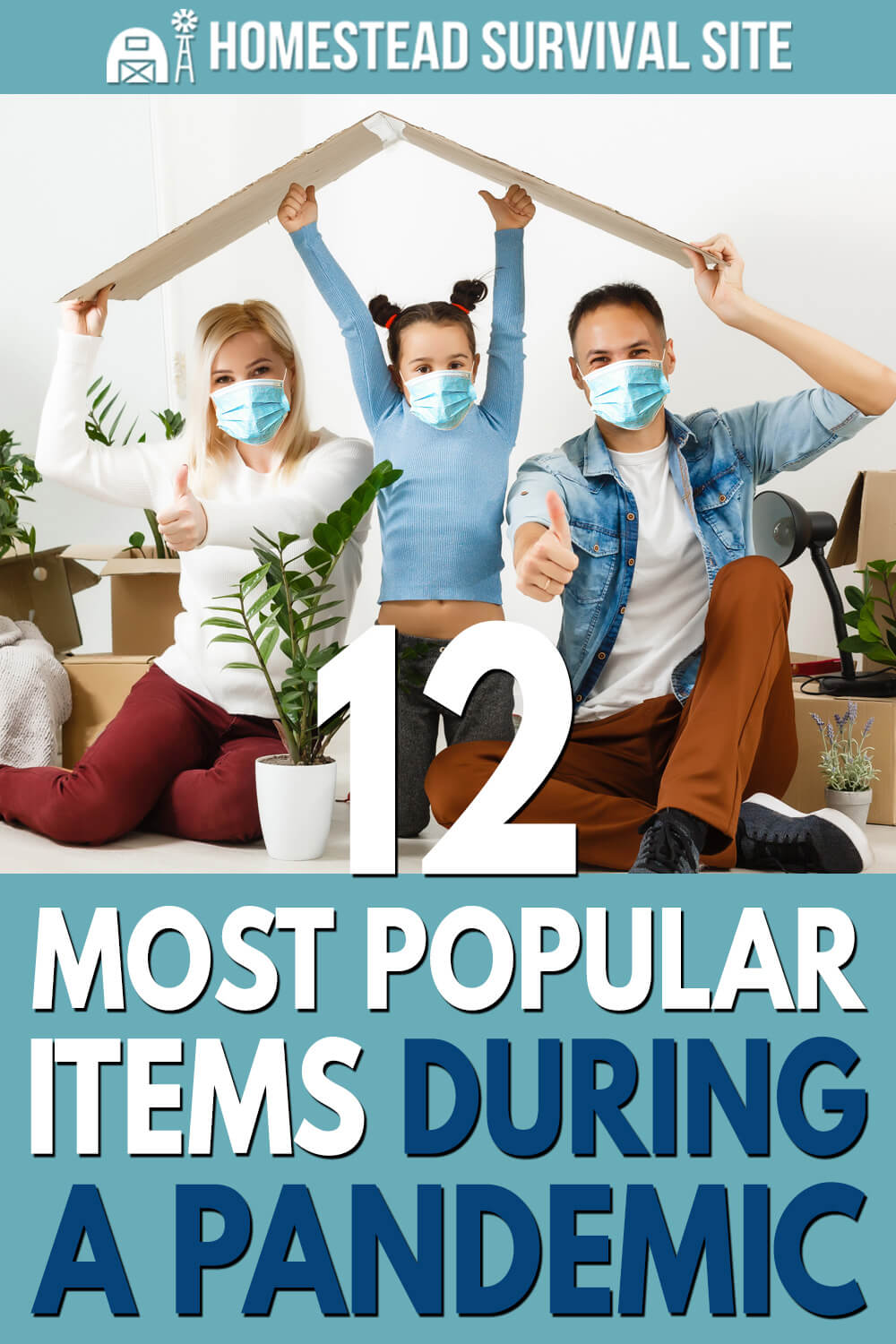 12 Most Popular Items During A Pandemic