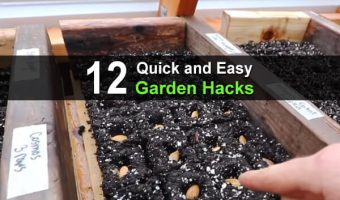 12 Quick and Easy Garden Hacks