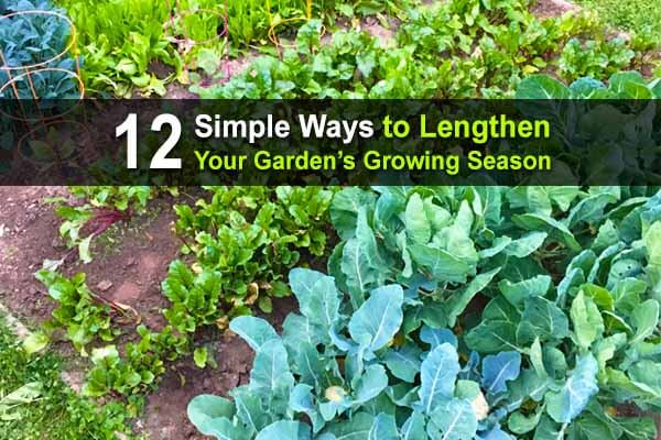 12 Simple Ways to Lengthen Your Garden's Growing Season