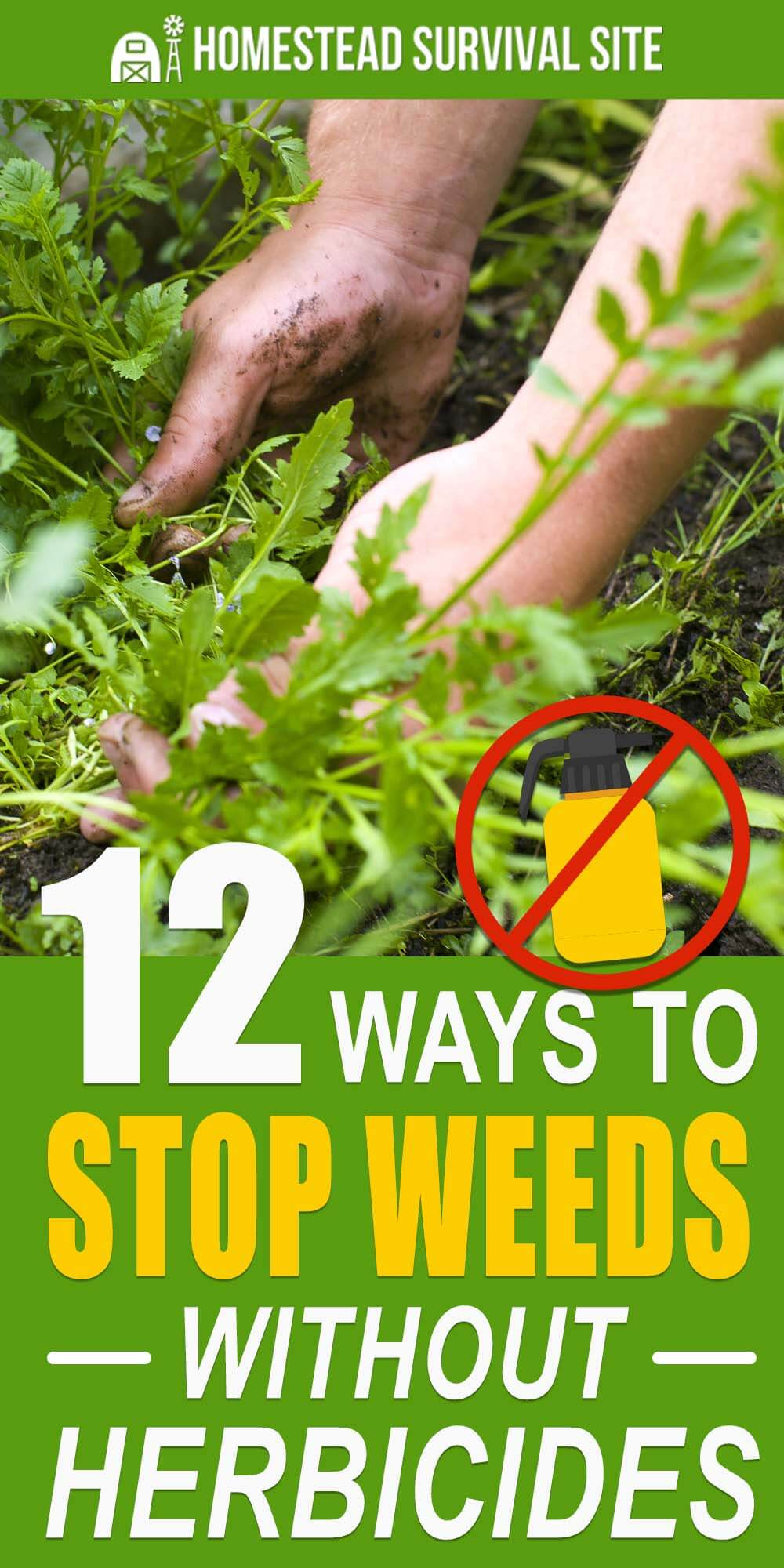 12 Ways to Stop Weeds Without Herbicides