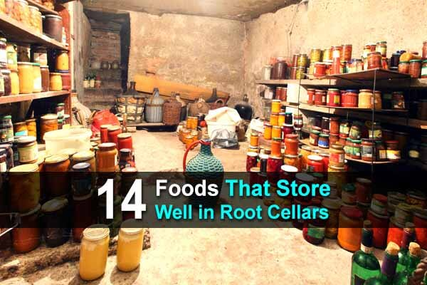 14 Foods That Store Well in Root Cellars