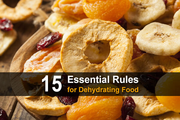 15 Essential Rules for Dehydrating Food
