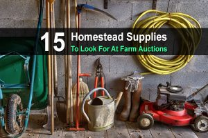 15 Homestead Supplies To Look For At Farm Auctions
