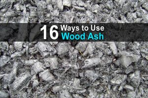 16 Ways to Use Wood Ash on Your Homestead