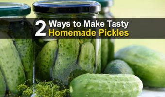 2 Ways to Make Tasty Homemade Pickles