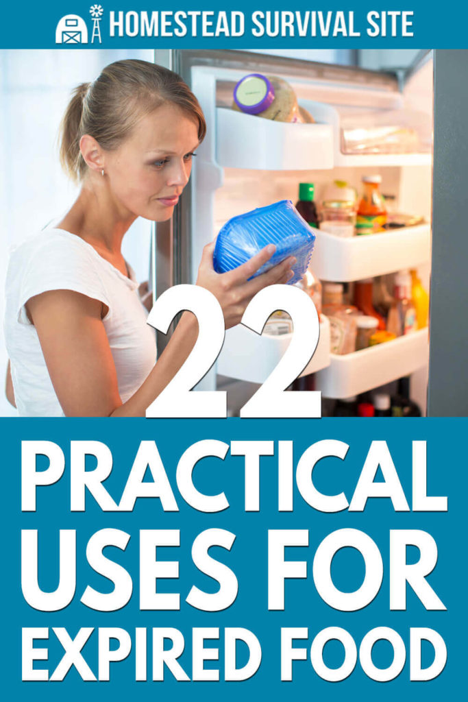 22 Practical Uses for Expired Food