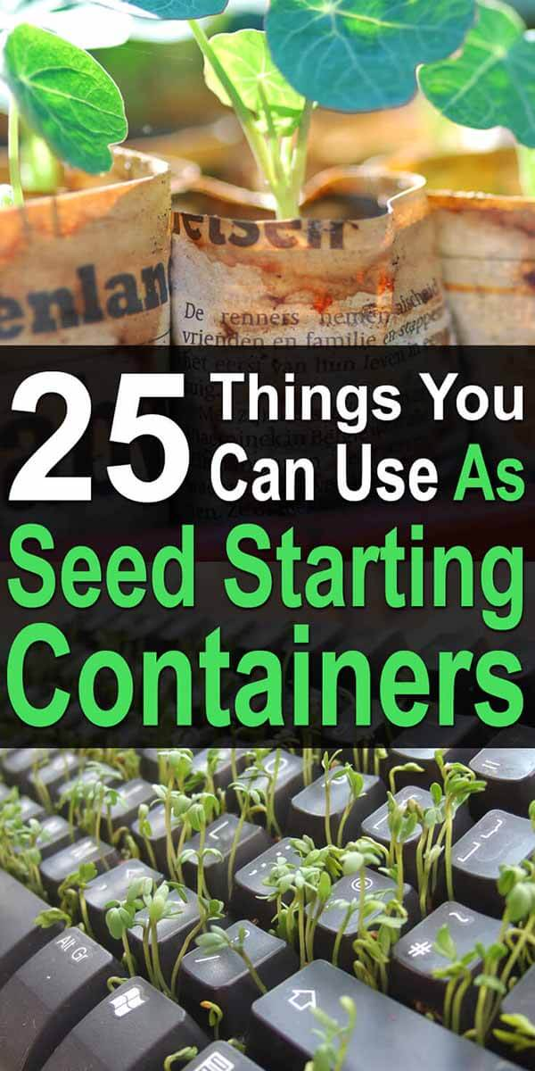 25 Things You Can Use As Seed Starting Containers