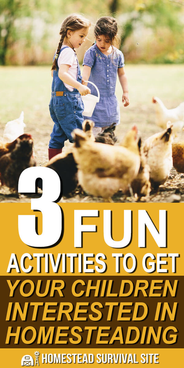 3 Fun Activities To Get Your Children Interested In Homesteading