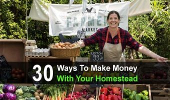 30 Ways to Make Money With Your Homestead