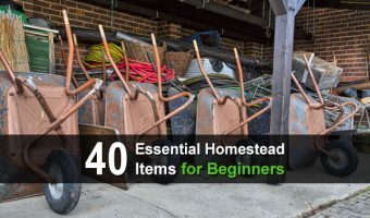 40 Essential Homestead Items for Beginners