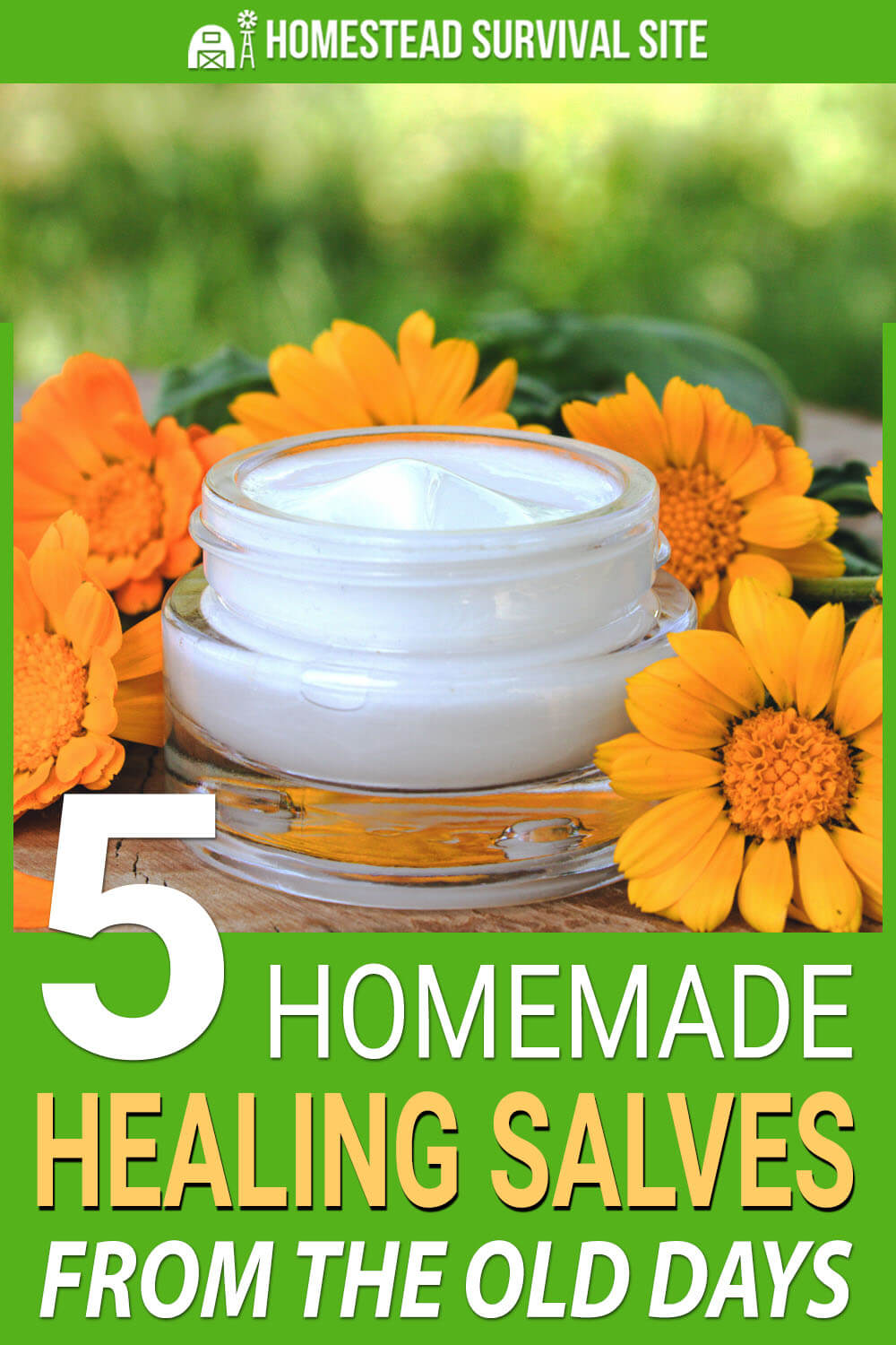 5 Homemade Healing Salves From The Old Days