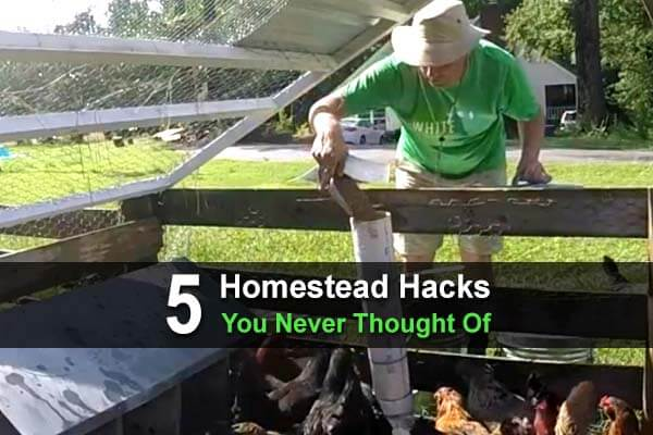 5 Homestead Hacks You Never Thought Of