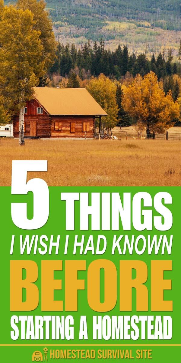 5 Things I Wish I Had Known Before Starting a Homestead