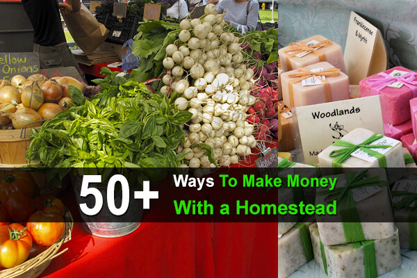 50+ Ways To Make Money With a Homestead