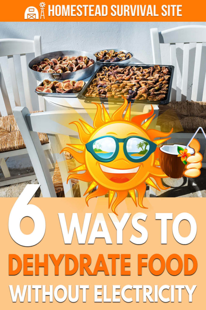 6 Ways to Dehydrate Food Without Electricity