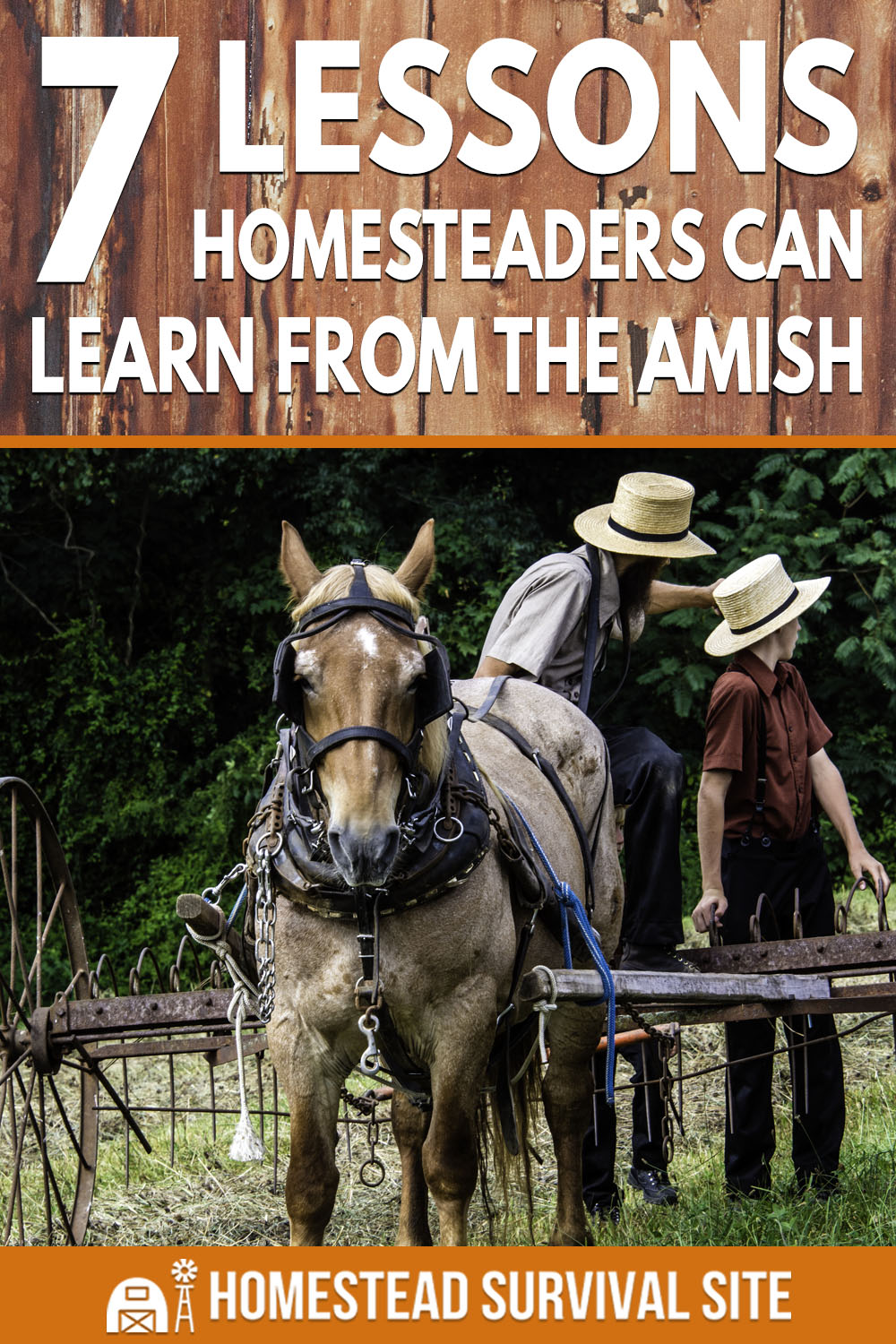 7 Lessons Homesteaders Can Learn From The Amish