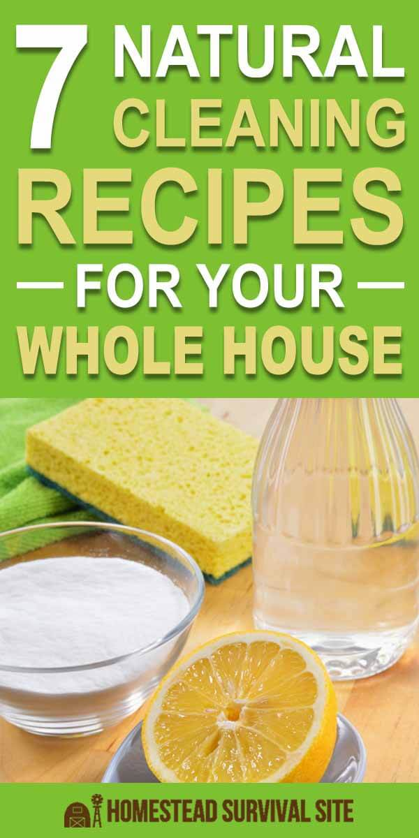 7 Natural Cleaning Recipes for Your Whole House
