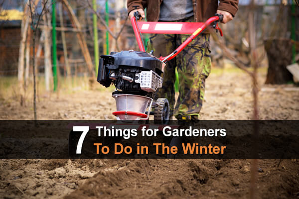 7 Things for Gardeners To Do in The Winter