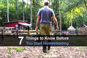 7 Things To Know Before You Start Homesteading