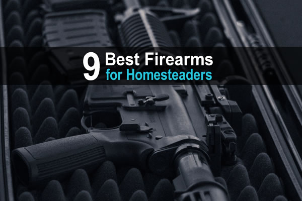 9 Best Firearms for Homesteaders