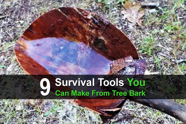 9 Survival Tools You Can Make From Tree Bark
