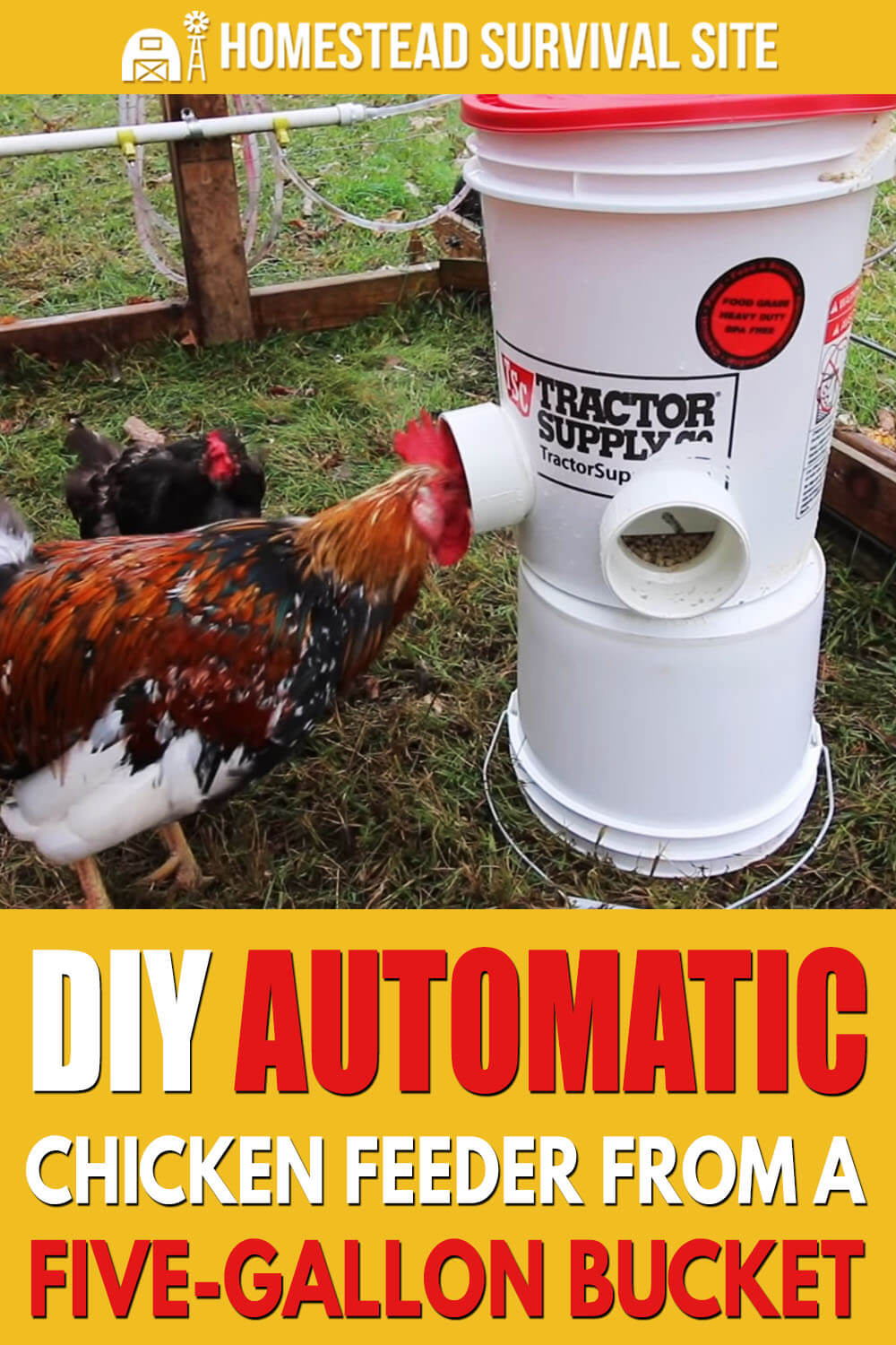 DIY Automatic Chicken Feeder from Five-Gallon Bucket