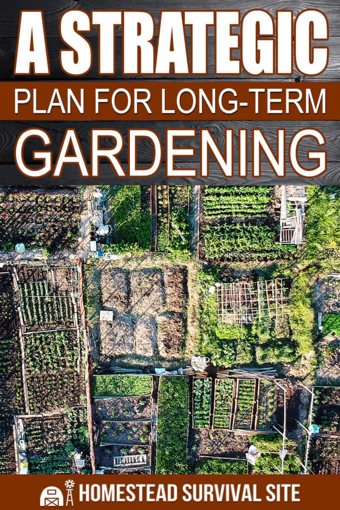 A Strategic Plan for Long-Term Gardening