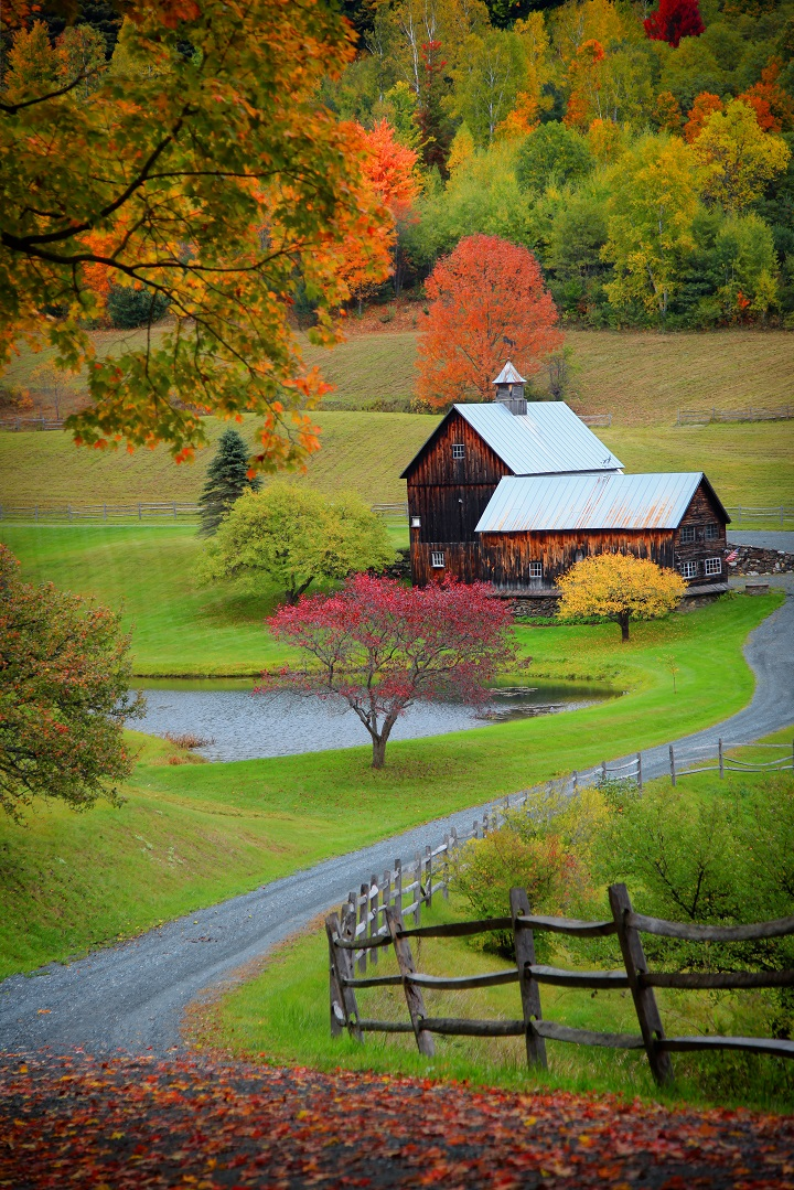 Barn in Countryside Surrounded by Trees