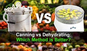 Canning vs Dehydrating: Which Method is Better?