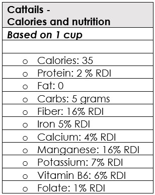 Cattails Nutrition Information