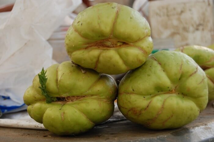 Chayote Squash Stacked
