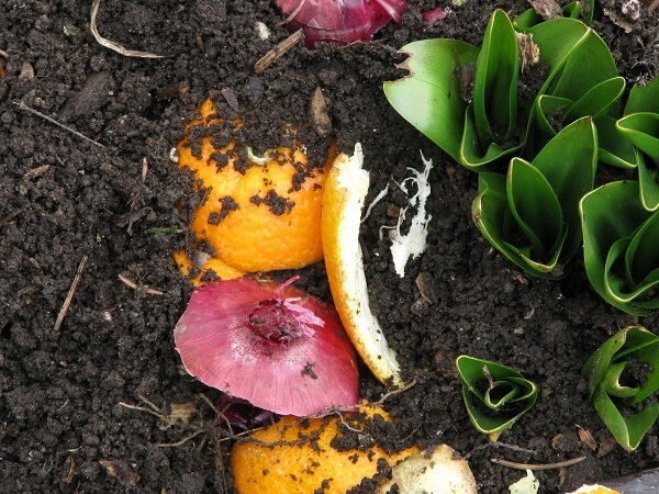 Composting is Green
