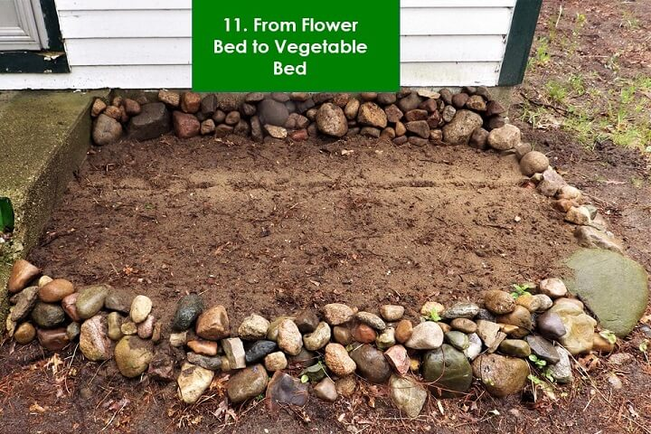 From Flower Bed To Vegetable Bed