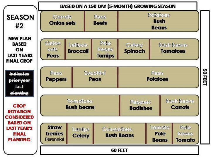 Garden Season Two – Crop Rotation From Previous Last Planting