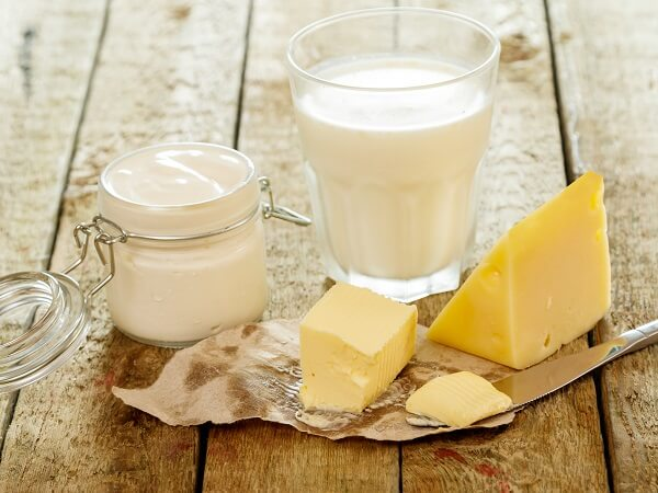 Homemade Dairy Products