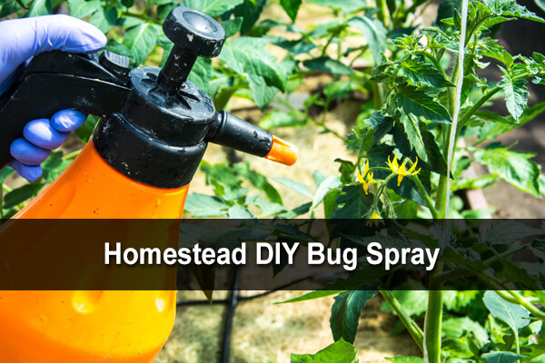 Homestead DIY Bug Spray
